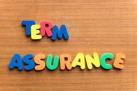 7 Must Known Facts About Term Insurance Plan