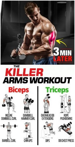 Martial Arts Programs: arm workout with Anavar