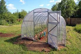 Peak Benefits Of Installing The Greenhouses In The Backyard